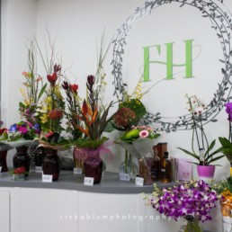 flower-haven-pic